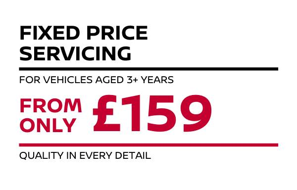 3+ Year Old Fixed Price Servicing