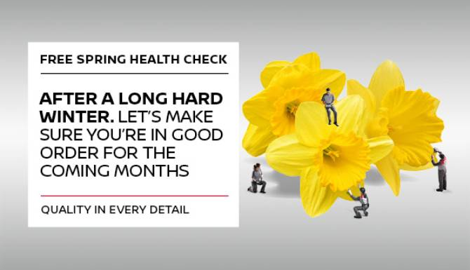 FREE SPRING HEALTH CHECK